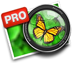 Freshly Squeezed Review – Focus 2 Pro